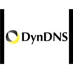Service DynDns
